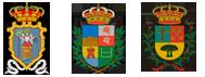 Colaboradora Ayto de Santa Cruz de La Palma, Breña Alta y Breña Baja